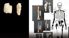 Δημιουργία - Επικοινωνία: Αμφίπολη: Πέντε οι νεκροί του τάφου - Δείτε φωτογρ...