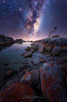 Bay of the Cosmos by Chrystal Hutchinson | Midnight Photography on 500px... #composite #dusk #milky way #nature #nikon #ocean #sea #sky #stars #tasmania #tree #water