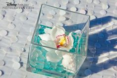 Little Mermaid themed Center Pieces... The orchid in water like I love but with shells and blue glass too!!