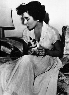 Elizabeth Taylor & kitty