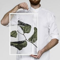 Visit Designstuff to purchase the latest range of unique floating leaves prints by Moebe, Paper Collective and Norm Architects.