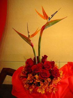 Flowers for Pentecost   Pentecost Flowers