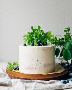 Blueberry layer cake // Kesäisen raikas mustikkakakku   Pinossa Lassi, Food Inspiration, Lifestyle Blog, Blueberry, Planter Pots, Cooking Recipes, Baking, Berry, Chef Recipes