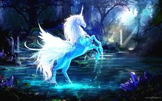 A Neon Blue Pegasus Unicorn Fantasy Poster Fantasy Print Fantasy Artwork - Fantasy Poster - Ideas of Fantasy Poster Wallpaper Computer, Unicornios Wallpaper, Rainbow Wallpaper, Wallpaper Pictures, Wallpaper Backgrounds, 1920x1200 Wallpaper, Amazing Wallpaper, Unicorn Fantasy, Unicorn Horse