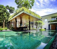 A Tropical Patio: The sun house in Singapore, which was designed by GUZ Architecs, features a ridiculously verdant pool area. I love the sleek contrast of the refined pergola's wooden ceiling with the fluffy grass carpeting on its roof.