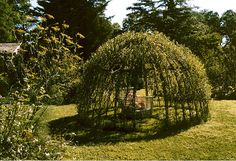Living Willow Outdoor Structure
