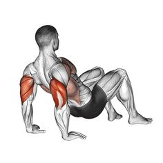 Gym Workouts For Men, Gym Workout Tips, Biceps Workout, Floor Workouts, Workout Videos, At Home Workouts, Muscle Fitness, Fitness Tips, Gif Sport
