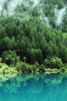 Jiuzhaigou Valley is a nature reserve and national park located in the north of Sichuan, China.