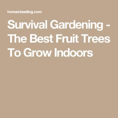 Survival Gardening - The Best Fruit Trees To Grow Indoors