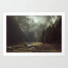 Foggy Forest Creek Art Print by Kevin Russ - $17.00