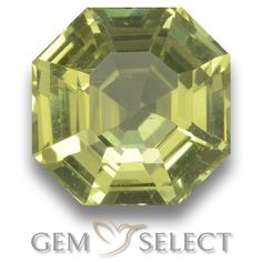 GemSelect features this natural untreated Apatite from Madagascar. This Green Apatite weighs 2.1ct and measures 8 x 7.9mm in size. More Asscher Cut Apatite is available on gemselect.com #birthstones #healing #jewelrystone #loosegemstones #buygems #gemstonelover #naturalgemstone #coloredgemstones #gemstones #gem #gems #gemselect #sale #shopping #gemshopping #naturalapatite #apatite #greenapatite #octagongem #octagongems #greengem #green Green Gemstones, Loose Gemstones, Natural Gemstones, Buy Gems, Asscher Cut, Gem S, Gemstone Colors, Madagascar, Shades Of Green