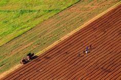 Plata integrală a subvenţiilor pe suprafaţă către fermierii români va începe în martie http://www.antenasatelor.ro/calendarul-gospodarului/7916-plata-integrala-a-subventiilor-pe-suprafata-catre-fermierii-romani-va-incepe-in-martie.html