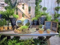Design Inspiration From Independent Garden Center Show in Chicago