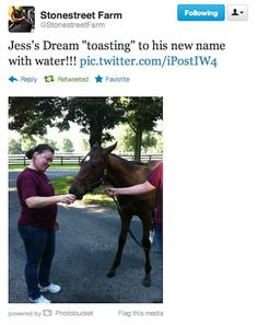 Rachel Alexander's son toasts his new name, Jess's Dream, at Stonestreet Farm. Don't worry - it's just water!