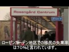大量移民・TPPがもたらす日本の未来 スウェーデン - YouTube