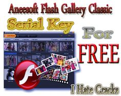 Get Aneesoft Flash Gallery Classic With Legal And Free Serial Key