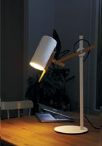 http://www.marset.com/en/products/decorative/table