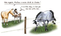 La Fugue, Solution, Html, Horses, Blog, Animals, Everything, Mom, Horse