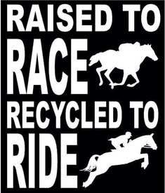Raised To Race; Recycled To Ride (Off Track Thoroughbred) Horse Decal Sticker