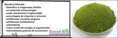 Beneficii Chlorella : - detoxifica si oxigeneaza celulele - are potențial anticancerigen - scade colesterolul si trigliceridele - sursa bogata de vitamine si minerale - echilibreaza circulatia sanguina  -echilibreaza metabolismul - antioxidanta - creste nivelul de energie al organismului - imbunatateste puterea de concentrare Metabolism