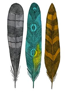 Feather Art - Watercolor Painting - Modern Nature Home Decor - Large Archival Print - Blue, Brown, Gray