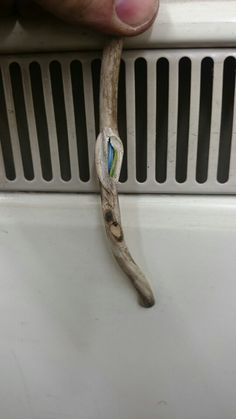 Carry out regular user checks - this could have started a fire if it had gone much further. Get more electrical safety advice at www.skyburtesting.weebly.com
