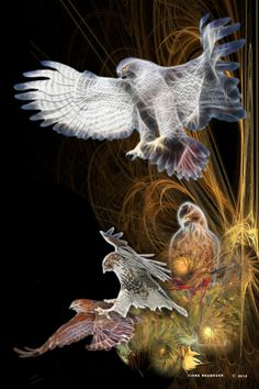 """Hawk Spirit...symbolizing """"visionary power"""", seeing from the higher perspective, keen vision, protection and messages from Spirit."""
