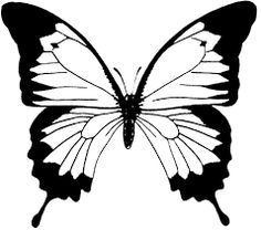 Image result for butterflies printable coloring pages