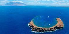 7 Spots Where Hawaii Is Best Seen Underwater Like this.