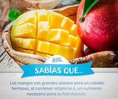 #Sabíasque #Mango #HuevoSanJuan