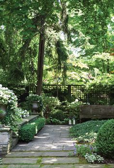 Soothing Garden Retreat - Let moss grow between loosely spaced pavers to soften the stone and give it a sense of age and permanence. Varying heights of plants and trees creates a secluded outdoor room. An open, grid-like fence allows for glimpses of mature trees on the other side, adding even more greenery and height to the overall design. Neatly clipped boxwood edges the pathway.