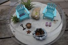 TINY ASSORTED SEASHELLS Sand Dollar and by LandscapesNMiniature