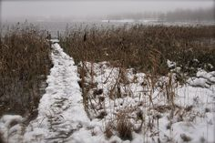 (Liivia Sirola) Snow, Memories, Winter, Outdoor, Photos, Memoirs, Winter Time, Outdoors, Souvenirs
