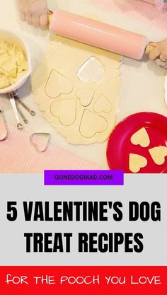 Valentine's Day isn't just for the humans in our lives, it's the perfect time to show our pooches how much we love them! Here are 5 Valentine's Day dog treat recipes, so throw on your apron and get baking for the favourite pooch in your life. Dog Biscuit Recipes, Dog Treat Recipes, Dog Food Recipes, Homemade Dog Treats, Healthy Dog Treats, Doggie Treats, Valentines Day Dog, Puppy Cake, Dog Health Tips
