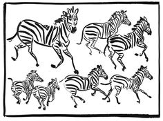 RL zebras