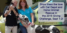 Cat Depot and Honor Animal Rescue will work together for the 2015 Giving Challenge! #ShowThemTheLove #GivingChallenge15