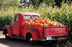 red antique truck Pumpkin Point Farms in Riverton UT. Vintage Pickup Trucks, Antique Trucks, Vintage Cars, Farm Trucks, Old Trucks, Diesel Trucks, Lifted Trucks, Autumn Cozy, Happy Fall Y'all