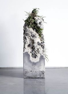 SORN/ART: The Remaining Sculptures Of Jamie North | sornmag.com