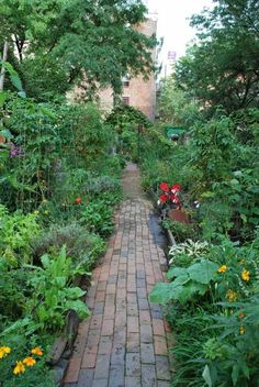 NYC community garden make me wonder why we can't have walkways in our community garden. Right now, it's pea gravel.