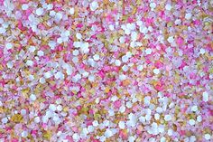 'In Bloom' Bakery Bling™ Glittery Sugar™  for Easter and Spring with Edible Daisies!