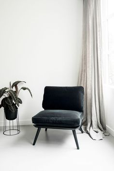 Luxury Danish design by Fredericia | Black chair Black plant white walls