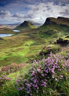 © Angie Latham Scotland