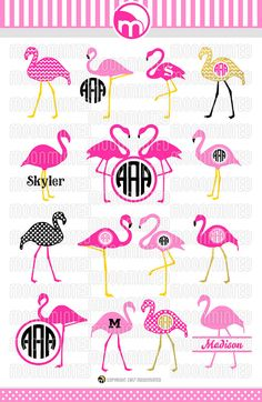 Flamingo SVG Cut Files  Monogram Frames for Vinyl Cutters