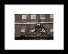 Swirls Framed Print By Alice Gipson
