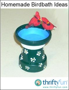A variety of materials and containers can be used to fashion a birdbath for your yard or garden. This guide is about homemade birdbath ideas.