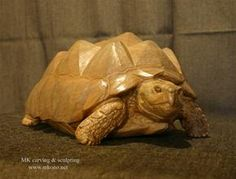 African Tortoise / Cherry from MK carving and sculpting