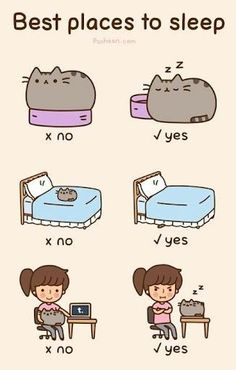 Best places to sleep - Pusheen Cat
