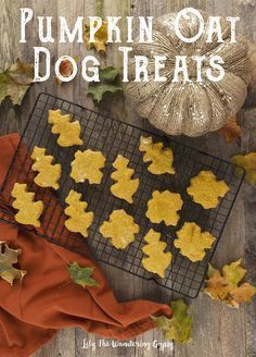 A Special Treat For Your Furry Friends! Organic Pumpkin Oatmeal Dog Treats…