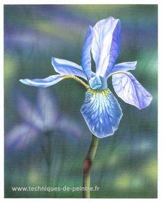 Dans cette vidéo, je vous emmène à la découverte d'un petit tableau peint à l'acrylique, à l'aérographe et au pinceau. C'est une fleur
