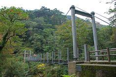 Footbridge on Yakushima Island, Japan